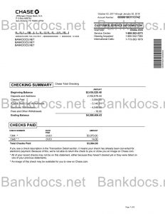 fake usa bank statement